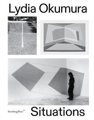 Lydia Okumura - Situations book
