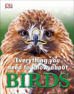 Everything You Need to Know About Birds by A. A. Milne