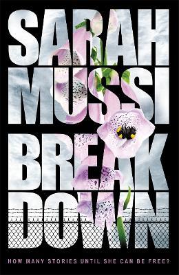 Breakdown by Sarah Mussi