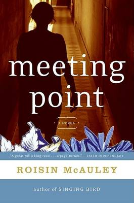 Meeting Point by Roisin McAuley
