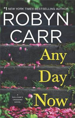 Any Day Now book