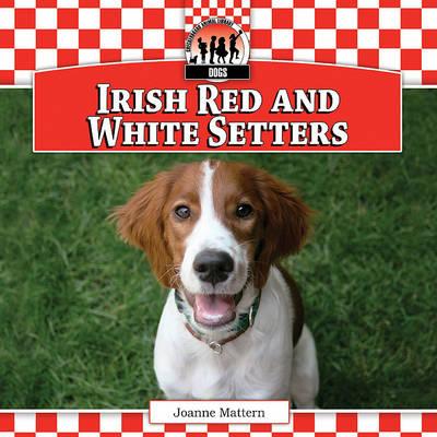 Irish Red and White Setters by Joanne Mattern