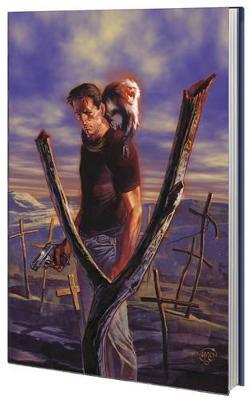 Absolute Y The Last Man Volume 2 by Brian K. Vaughan