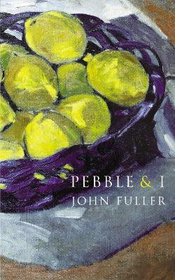 Pebble & I book