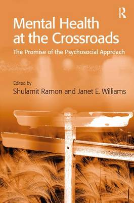 Mental Health at the Crossroads book