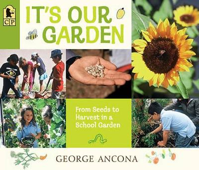 It's Our Garden: From Seeds to Harvest in a School Garden by George Ancona