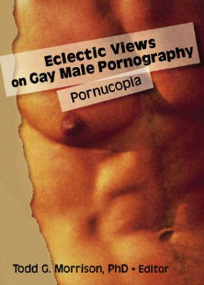 Eclectic Views on Gay Male Pornography by Todd G. Morrison