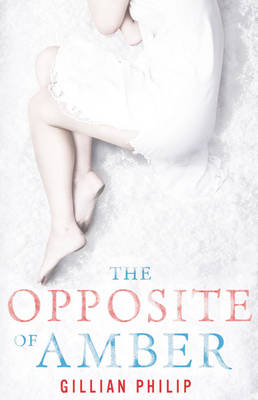 The Opposite of Amber by Gillian Philip