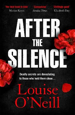 After the Silence: The An Post Irish Crime Novel of the Year book