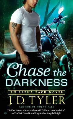 Chase the Darkness book