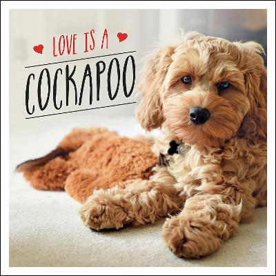 Love is a Cockapoo: A Dog-Tastic Celebration of the World's Cutest Breed book