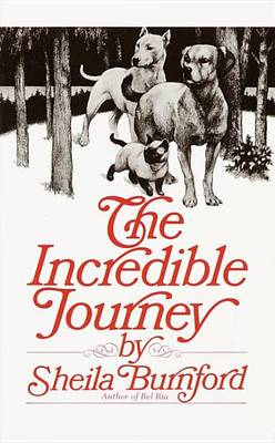 Incredible Journey book