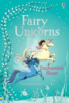 Fairy Unicorns 4 - Enchanted River book