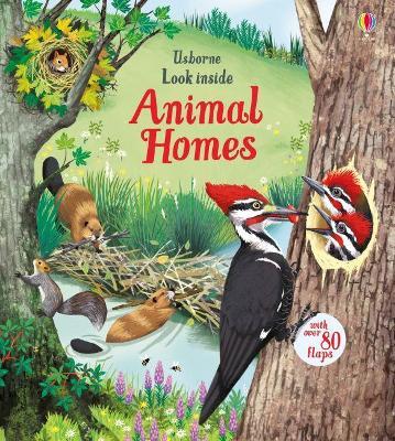 Look Inside Animal Homes book