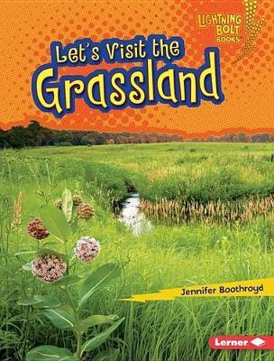 Let's Visit the Grassland by Jennifer Boothroyd
