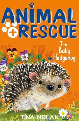 Baby Hedgehog by Tina Nolan