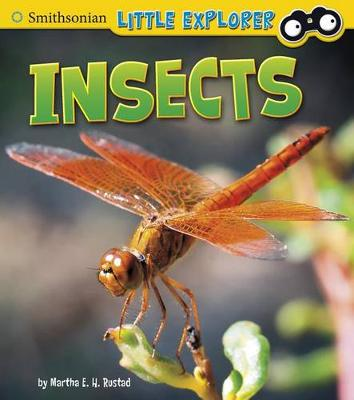 Insects by ,Martha,E.,H. Rustad