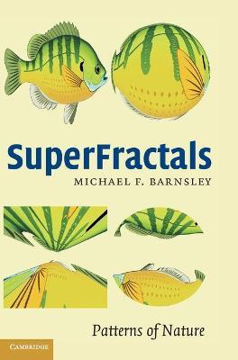 SuperFractals book