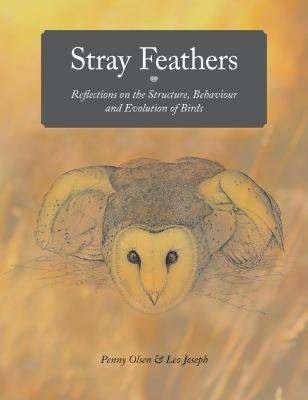 Stray Feathers by Penny Olsen
