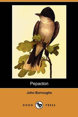 Pepacton (Dodo Press) by John Burroughs