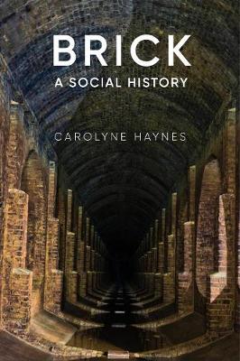 Brick: A Social History by Carolyne Haynes