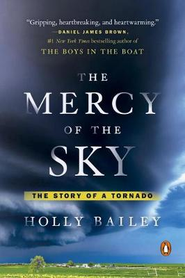 Mercy Of The Sky book