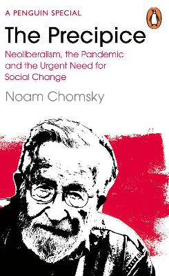 The Precipice: Neoliberalism, the Pandemic and the Urgent Need for Radical Change book