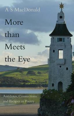 More than Meets the Eye by A. S. MacDonald