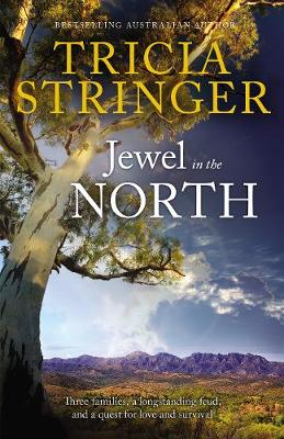 Jewel In The North book