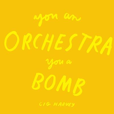 You An Orchestra You A Bomb by Cig Harvey