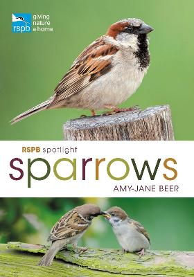 RSPB Spotlight Sparrows book