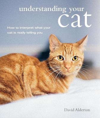 Understanding Your Cat by David Alderton