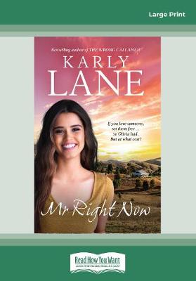 Mr Right Now by Karly Lane