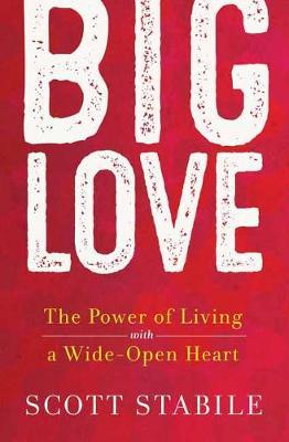 Big Love by Scott Stabile
