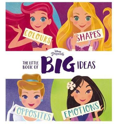 LITTLE BOOK OF BIG IDEAS book
