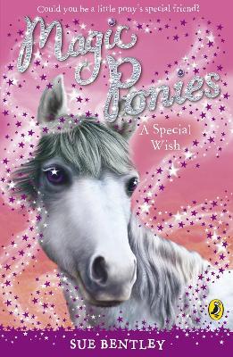 Magic Ponies: A Special Wish book