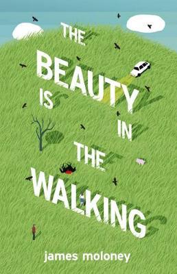 Beauty is in the Walking book