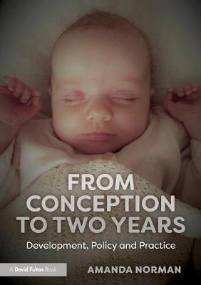 From Conception to Two Years: Development, Policy and Practice by Amanda Norman