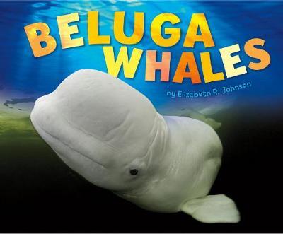 Beluga Whales by Elizabeth R Johnson