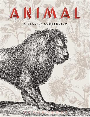 Animal by Valerie Sueur-Hermel