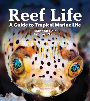 Reef Life: A Guide to Tropical Marine Life by Michael Scott