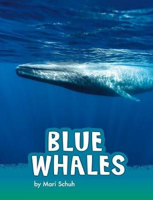 Blue Whales book