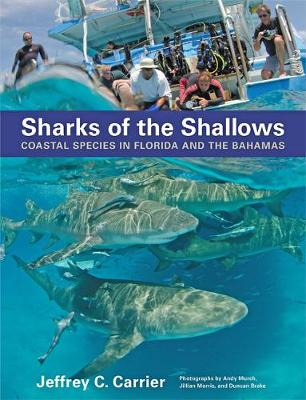 Sharks of the Shallows by Jeffrey C. Carrier