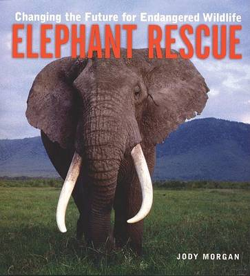 Elephant Rescue by Judy Morgan