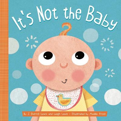 It's Not the Baby book