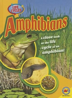Amphibians by Jack Zayarny