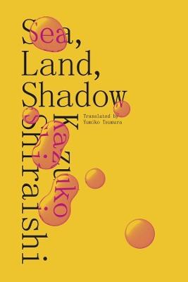 Sea, Land, Shadow by Kazuko Shiraishi