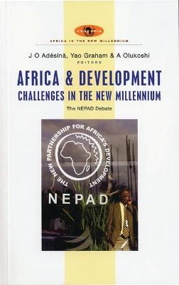 Africa and Development Challenges in the New Millennium book