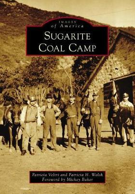 Sugarite Coal Camp by Patricia Veltri