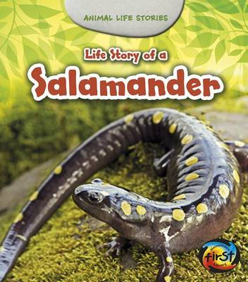 Life Story of a Salamander by Charlotte Guillain